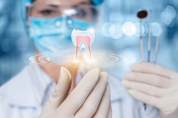 The concept of dental treatment. The doctor looks at the model of the tooth.